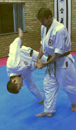 About Aikido Image1